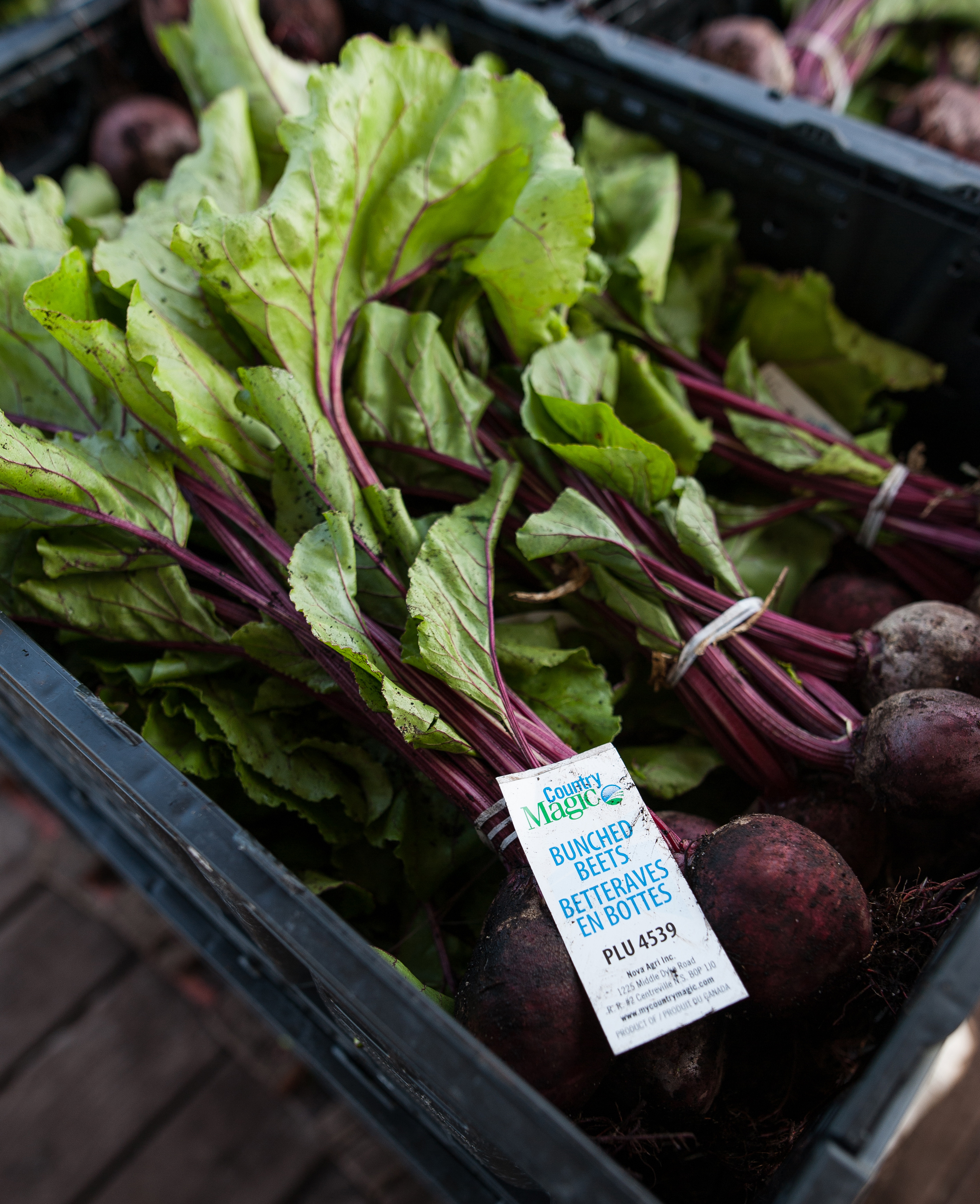 Country Magic Beets