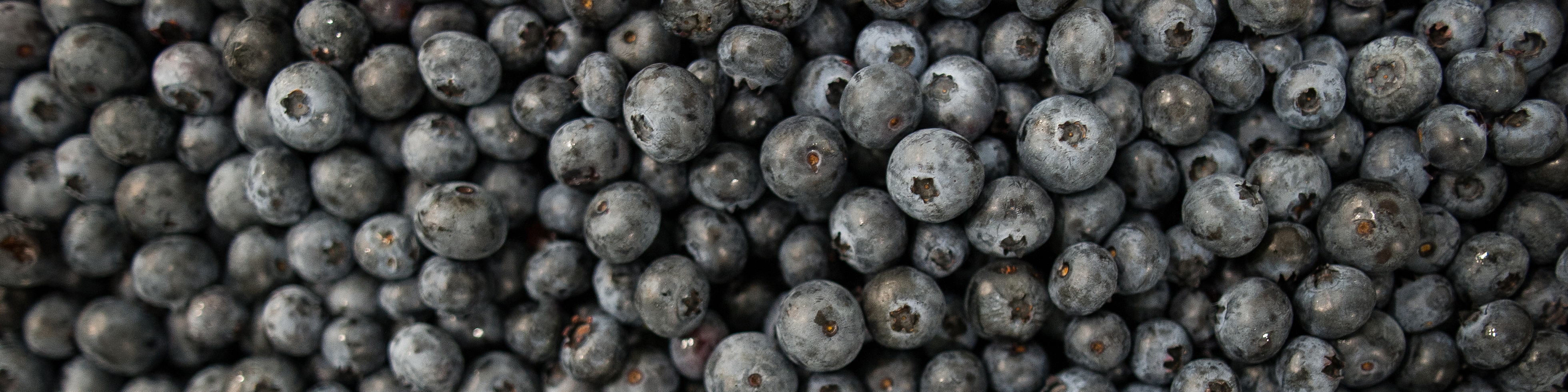 Blueberries, Country magic