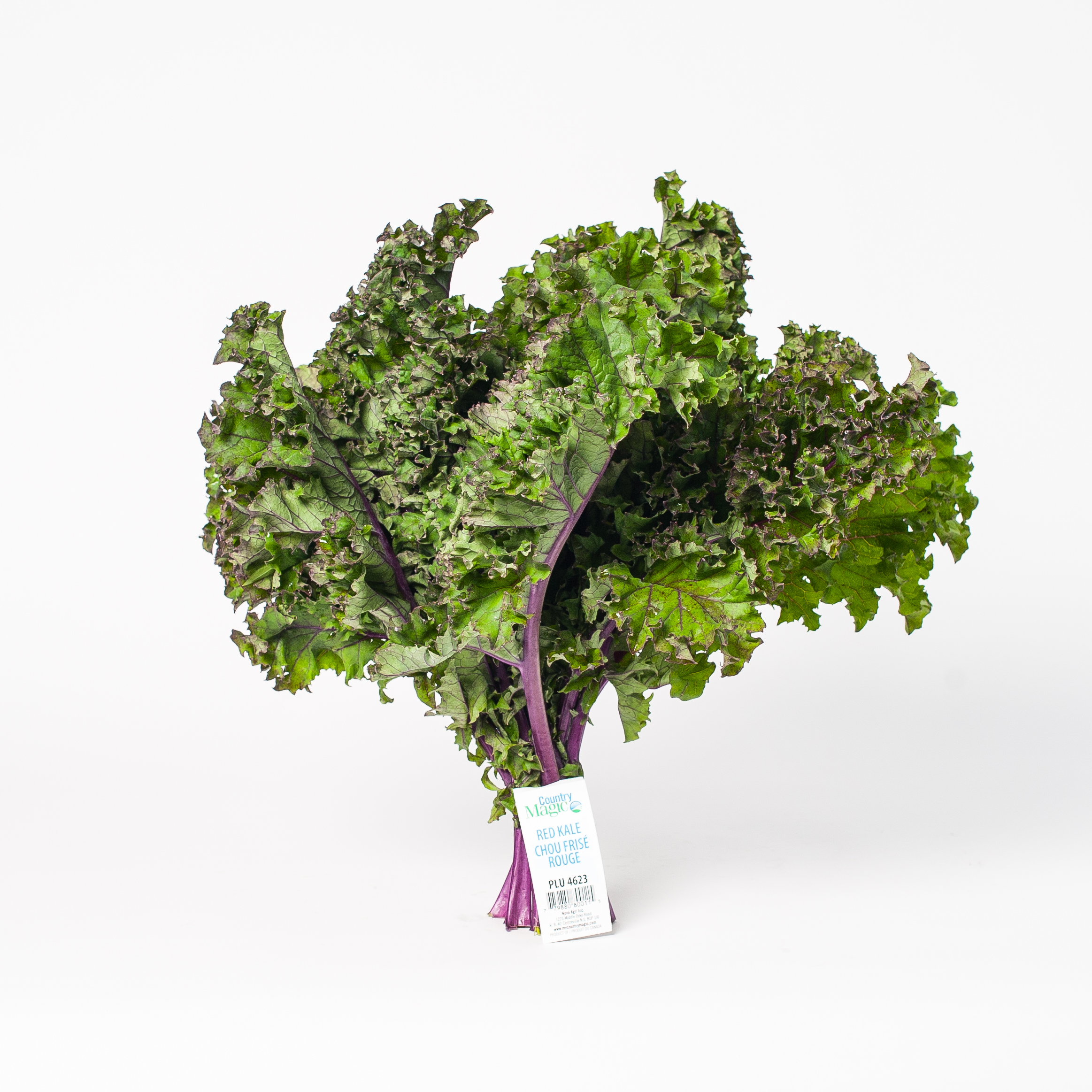 country magic red kale
